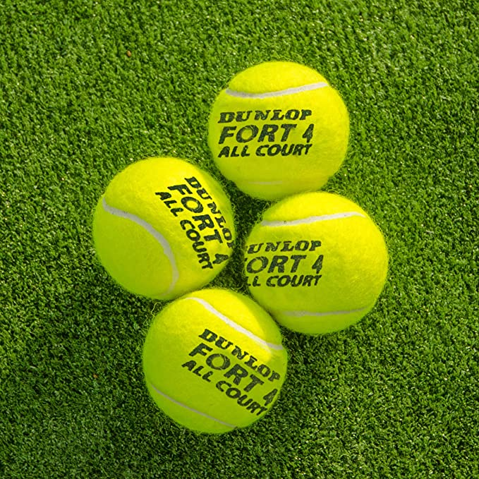 Amazon.com: Net World sports Dunlop Fort All Court pelotas ...