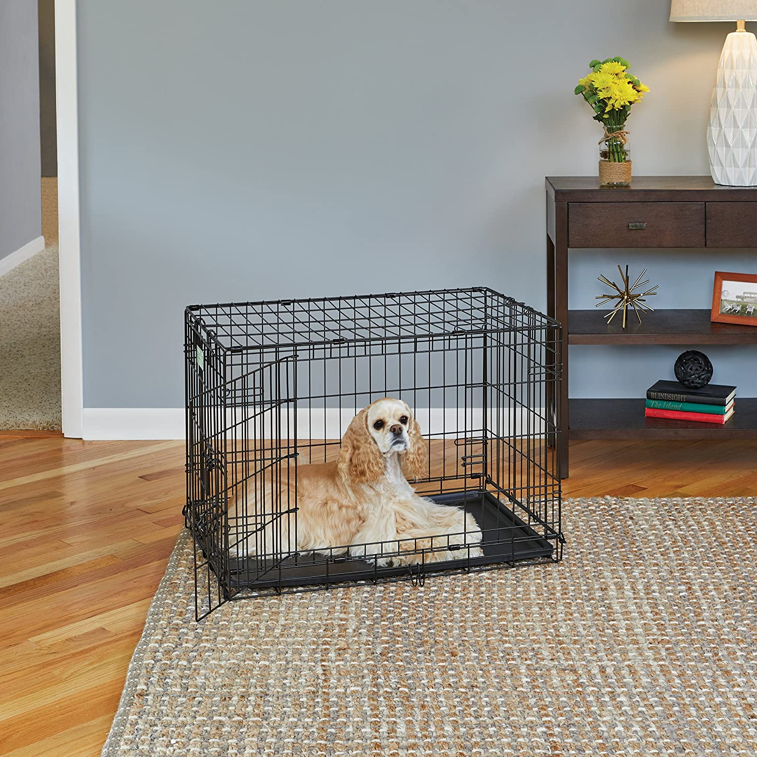 MidWest Life Stages Double-Door Folding Metal Dog Crate, 30 Inches ...