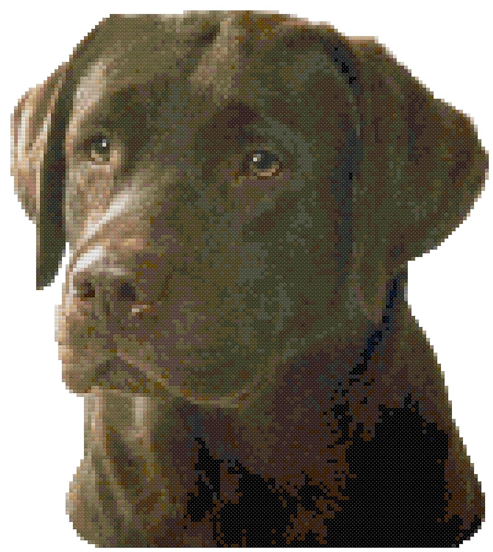 Amazon.com: Chocolate Labrador Retriever Dog Portrait Counted ...