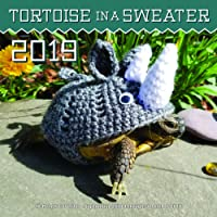 Tortoise in a Sweater 2019: 16-Month Calendar - September 2018 through December 2019 (Calendars 2019)