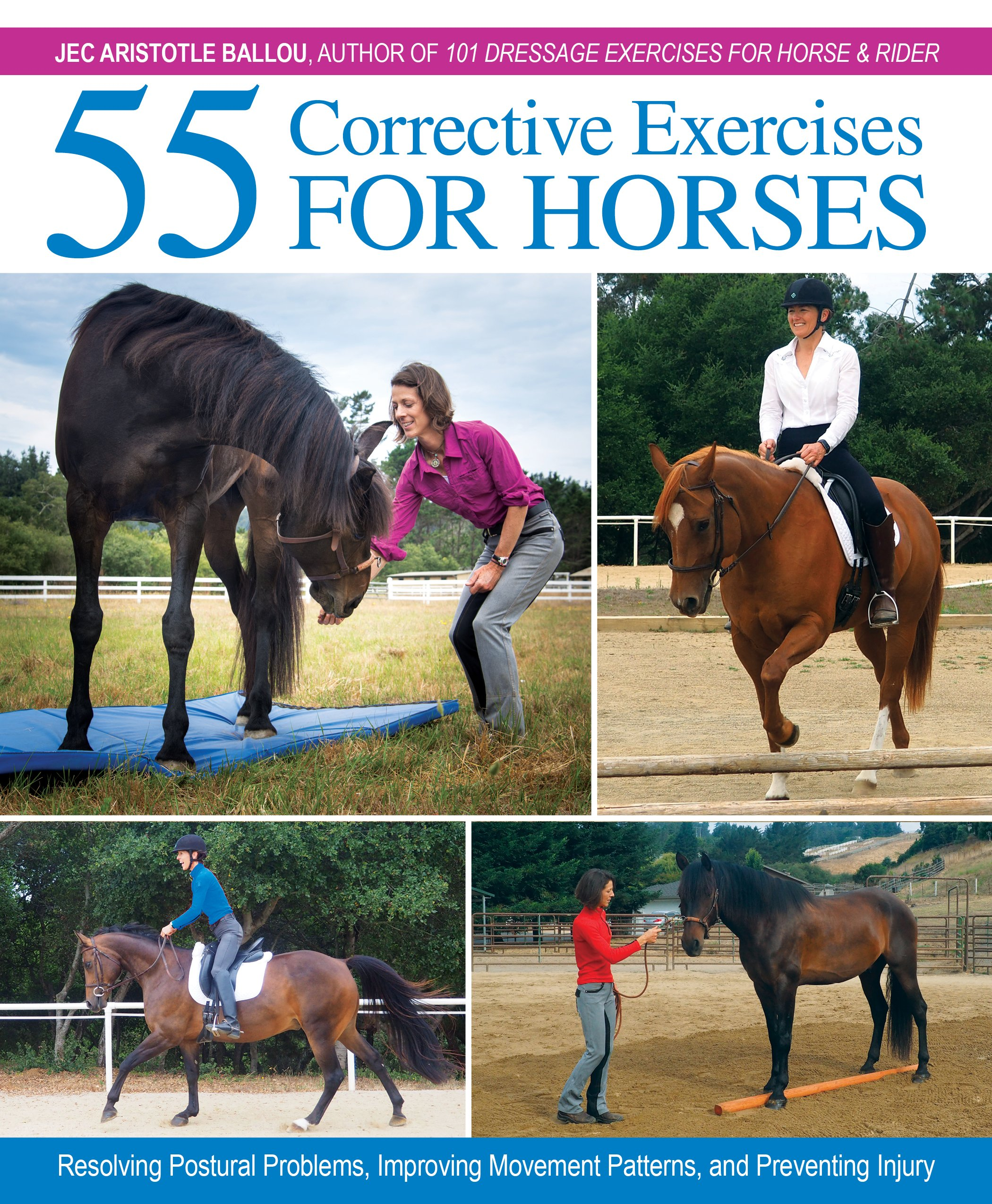 Amazon veterinary medicine books small animal medicine 55 corrective exercises for horses resolving postural problems improving movement patterns and preventing fandeluxe Choice Image