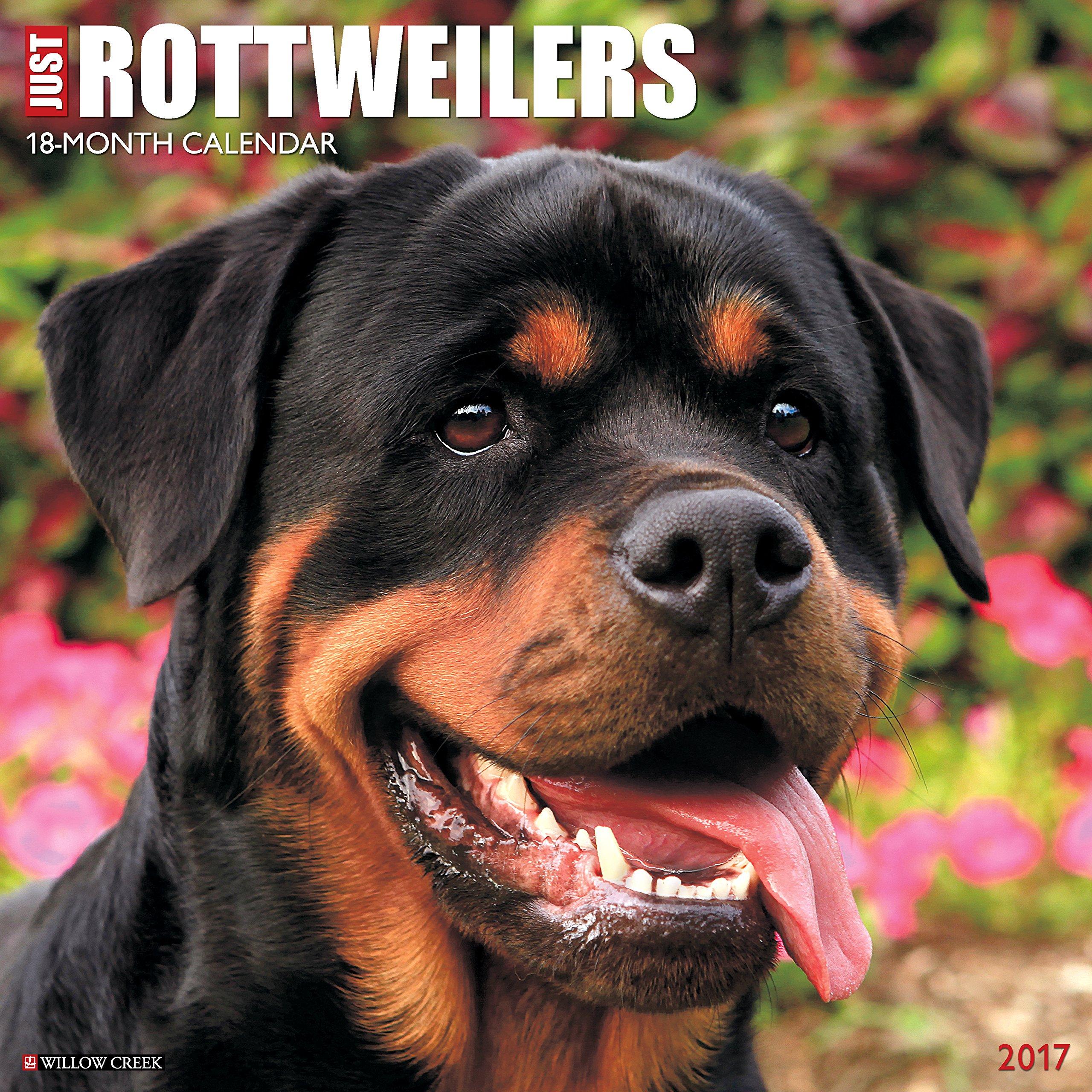 Read Online Just Rottweilers 2017 Wall Calendar (Dog Breed Calendars) PDF