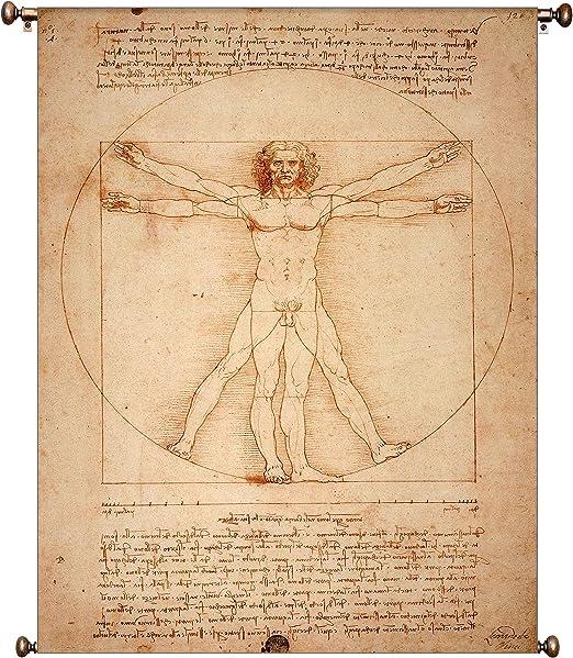 DaVinci Vitruvian Man Canvas Print 20*30 Inch HUGE !