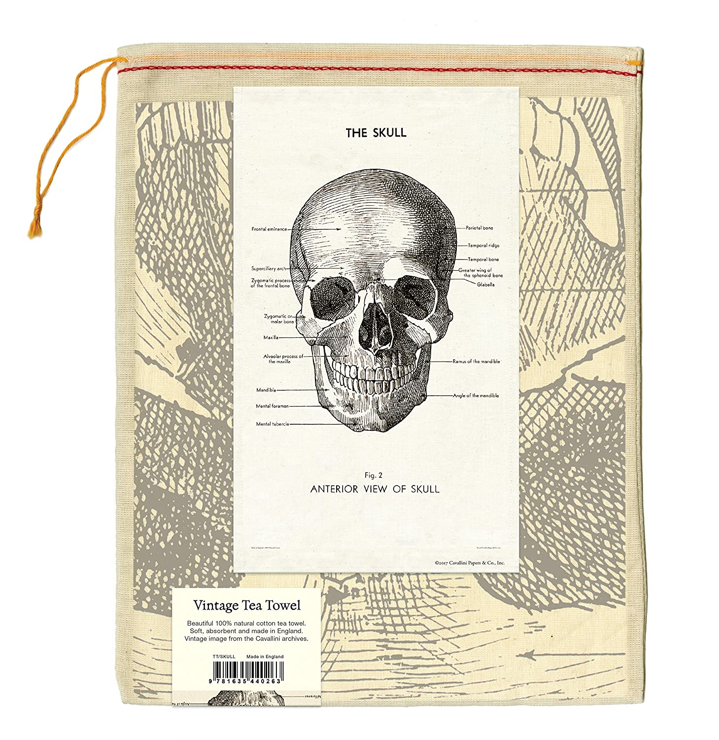 Amazon.com: Cavallini Papers & Co Skull Cavallini Vintage Cotton Tea ...
