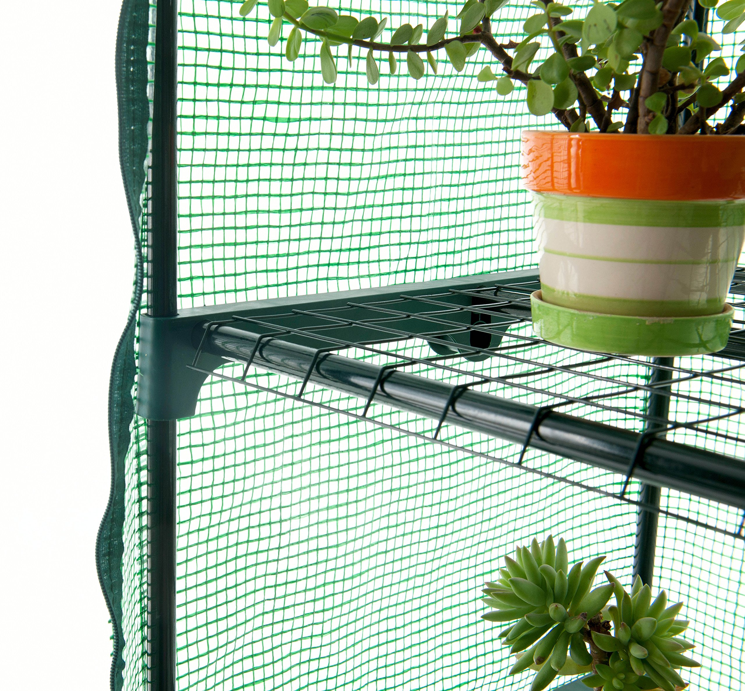 GOJOOASIS 4 Tier Mini Portable Garden Greenhouse on Wheels Plants Shed Hot House for Indoor and Outdoor by GOJOOASIS (Image #6)