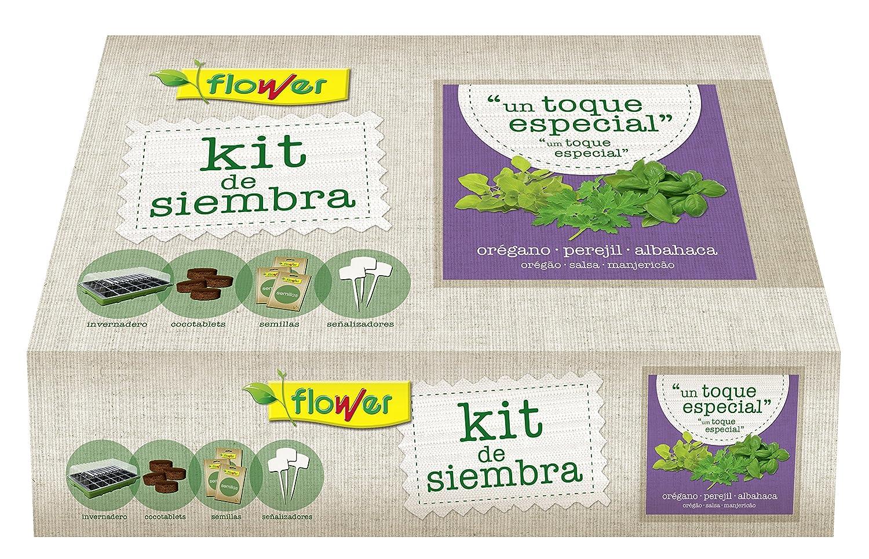 Flower 51173 - Kit semillas un toque especial (oregano, perejil, albahaca) Productos Flower SA