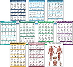 """QuickFit 10 Pack - Exercise Workout Poster Set - Dumbbell, Suspension, Kettlebell, Resistance Bands, Stretching, Bodyweight, Barbell, Yoga Poses, Exercise Ball, Muscular System Chart - (18"""" x 27"""")"""