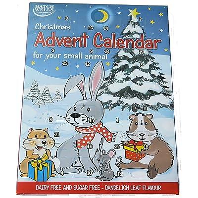 Hatchwells - Calendario de Adviento para Animales pequeños con Tratamiento de Yogur (70 g): Productos para mascotas