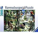 Ravensburger - 16610 - Puzzle - Animaux dans Jungle - 2000 pièces