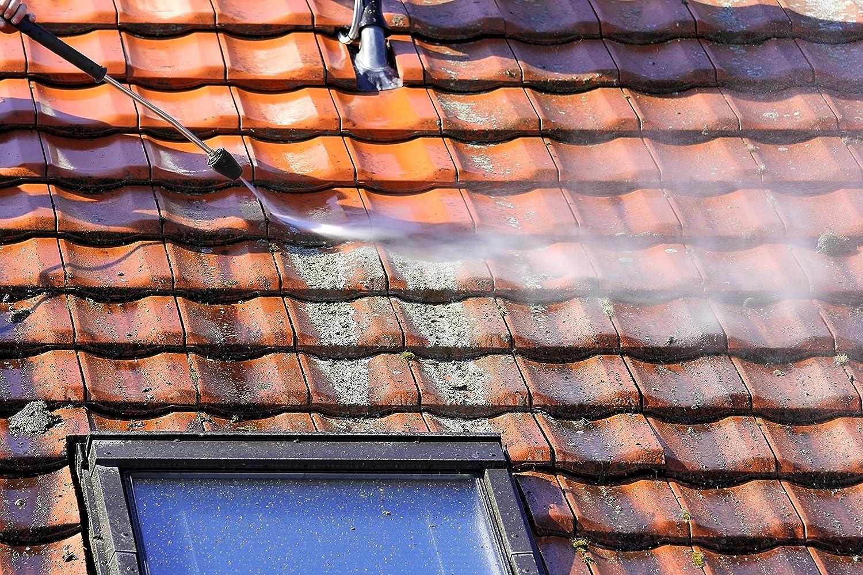 Alghe e antimuschio per tetto muschio rimozione tetto detergente