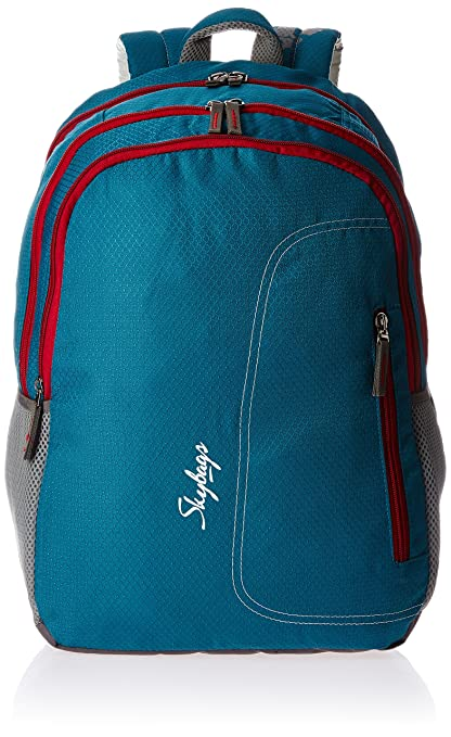 9eb446bca07 Skybags Neon Blue Casual Backpack (NEON02BLU)  Amazon.in  Bags ...