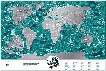 Amazoncom Small Scratch Off Travel World Map Premium Edition - Amazon map of us