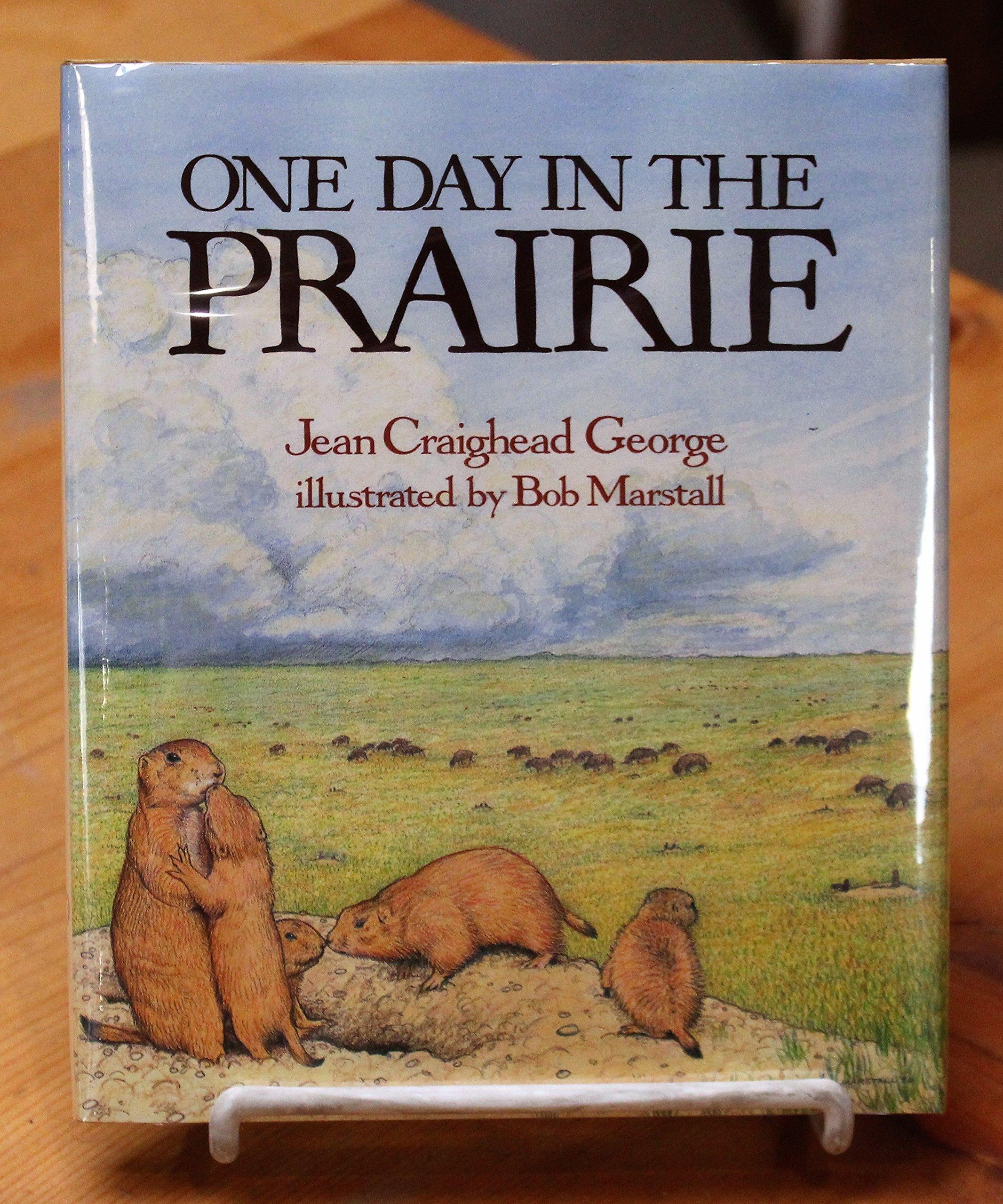 One Day in the Prairie: Amazon.co.uk: Jean Craighead George: 9780690045666:  Books
