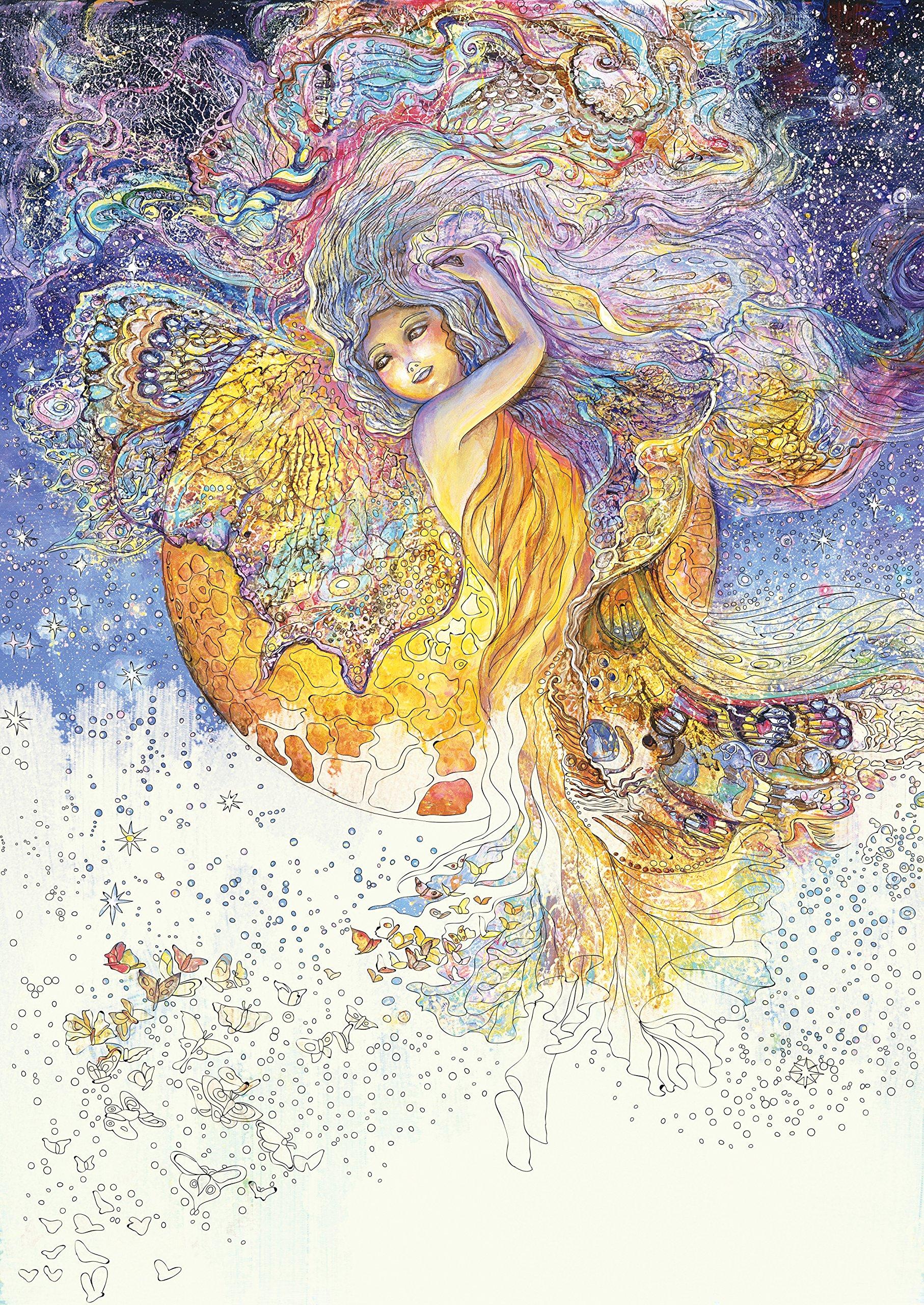 Amazon.com: Enchanted Fairies Coloring Book (9780738757520 ...