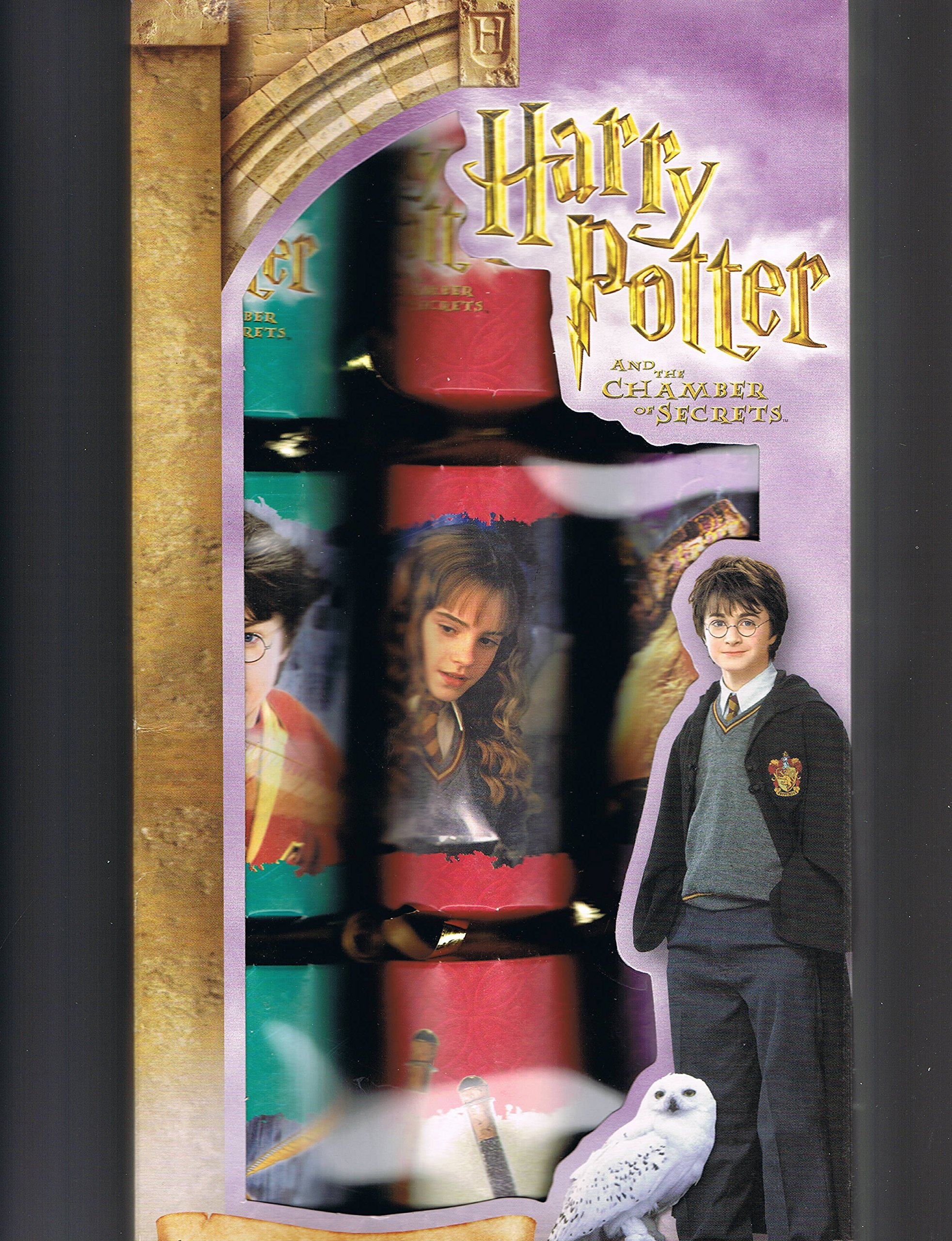 Harry Potter Box of Holiday or Party Favor Crackers by Harry Potter
