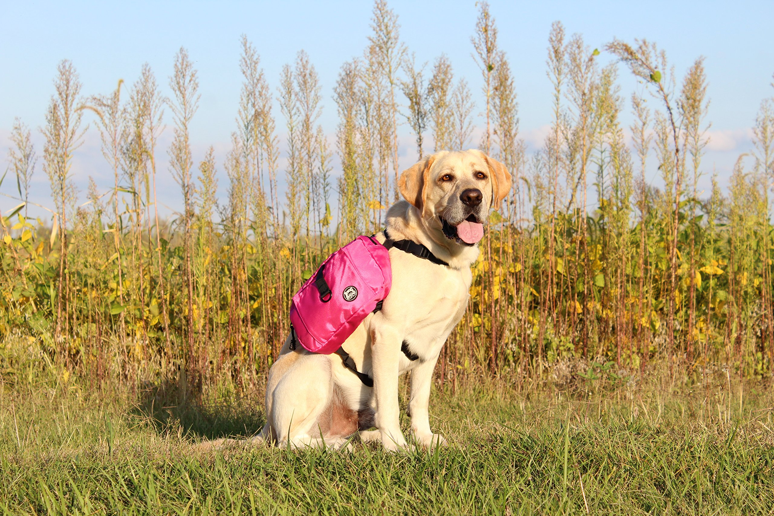 RIGG DOG Oxford Canvas Dog Saddle Bag Harness Backpack - Perfect Dog Hiking Pack for Treks, Camping and Hound Travel | Durable, Lightweight, Saddlebags for Medium and Large Dogs (Pink)