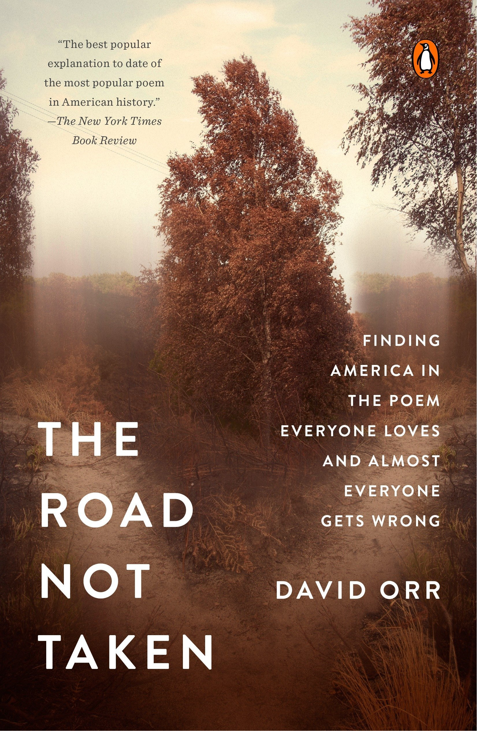Image result for road not taken david orr