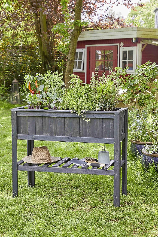 myGardenlust - Jardinera de Madera para Plantar Verduras en el ...
