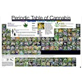 Periodic Table of Cannabis (Weed Marijuana Table) Novelty Drug Smoking Humor Poster Print (Unframed 24 x 36 Poster)