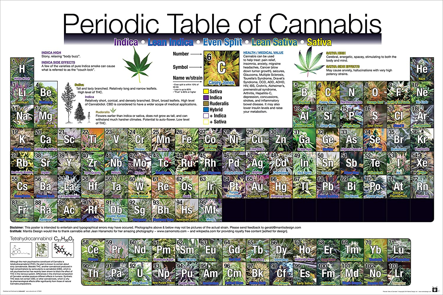 Amazon periodic table of cannabis weed marijuana table amazon periodic table of cannabis weed marijuana table novelty drug smoking humor poster print unframed 24 x 36 poster posters prints gamestrikefo Choice Image