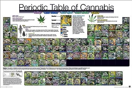 Amazon Periodic Table Of Cannabis Weed Marijuana Table