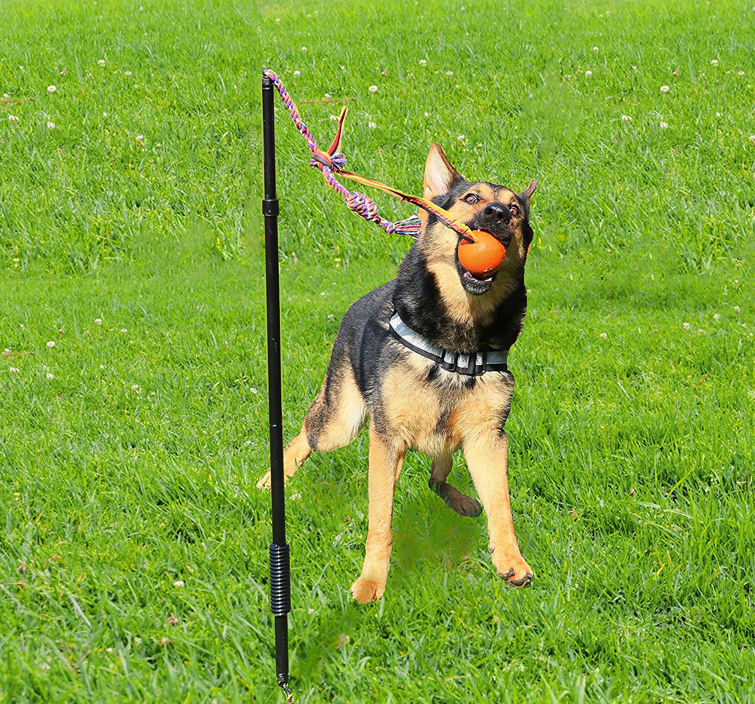 Interactive Tug Toy, Large Highland Farms Select Dog Retractable Interactive Training Tug Toy Pet Obedience Training Tug Stable Exercise Metal Pole & Spring Rod with Replaceable Chew Rope for Small Medium Large Dogs