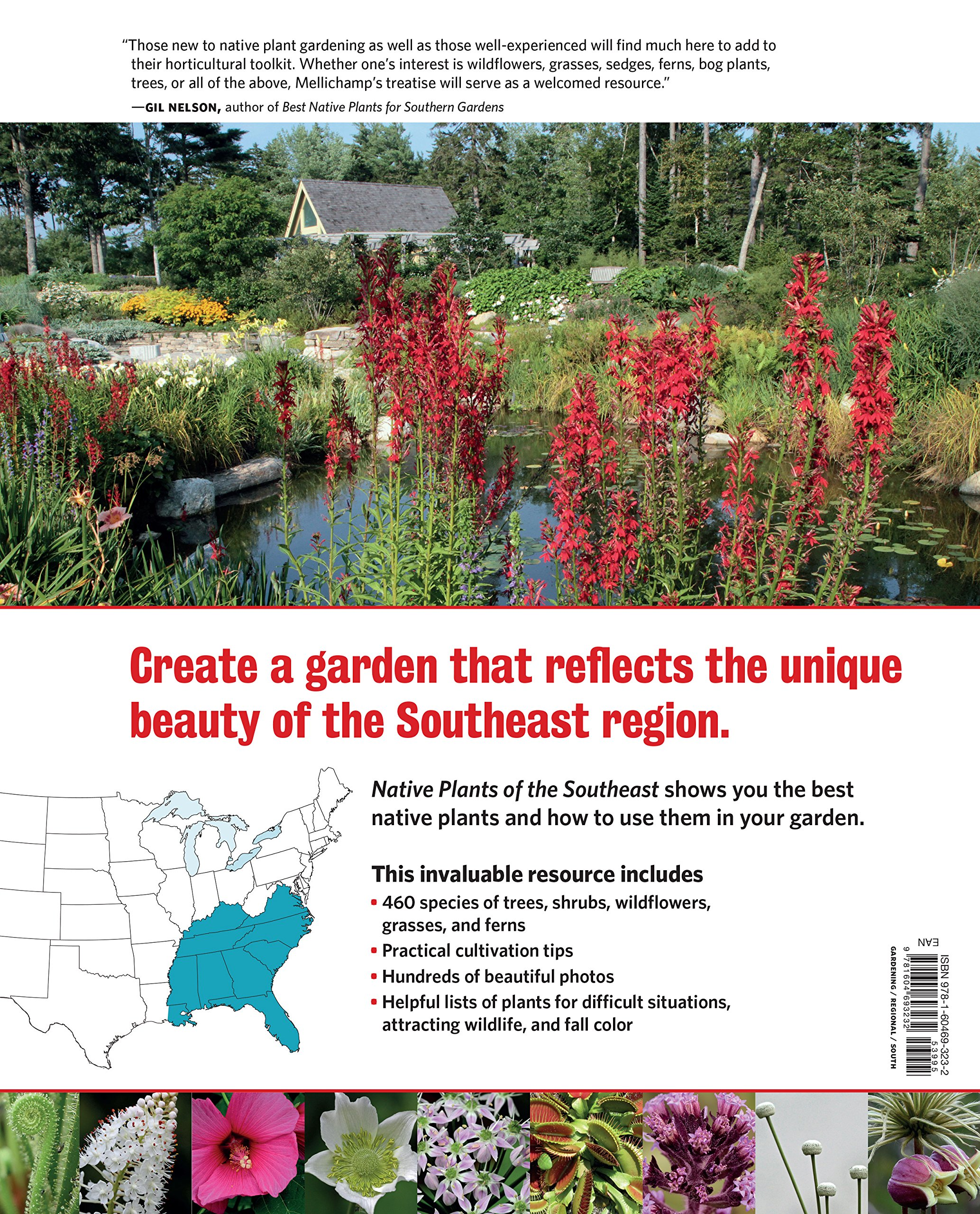 Native Plants Of The Southeast: A Comprehensive Guide To The Best 460  Species For The Garden: Larry Mellichamp, Will Stuart: 9781604693232:  Amazon.com: ...