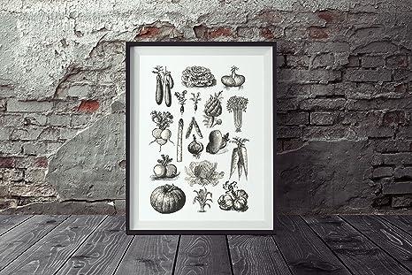 poster verdure DIN A4, Poster Da Cucina, murale, poster vintage ...