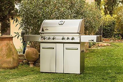 Napoleon Holzkohlegrill Charcoal Pro 605 : Amazon napoleon lex rsbipss propane gas grill garden outdoor