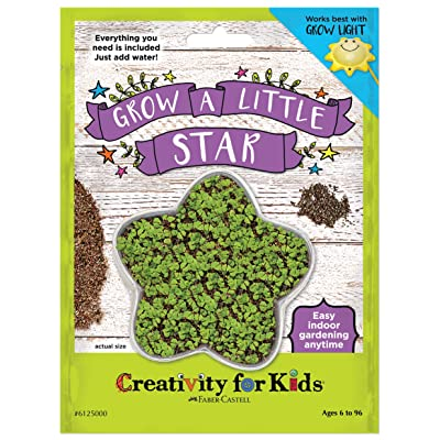 Creativity for Kids GROW a Little Star - Star Shaped Mini Grow Kit for Kids: Toys & Games