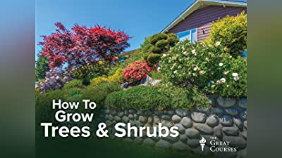 How to Grow Anything: Make Your Trees and Shrubs Thrive