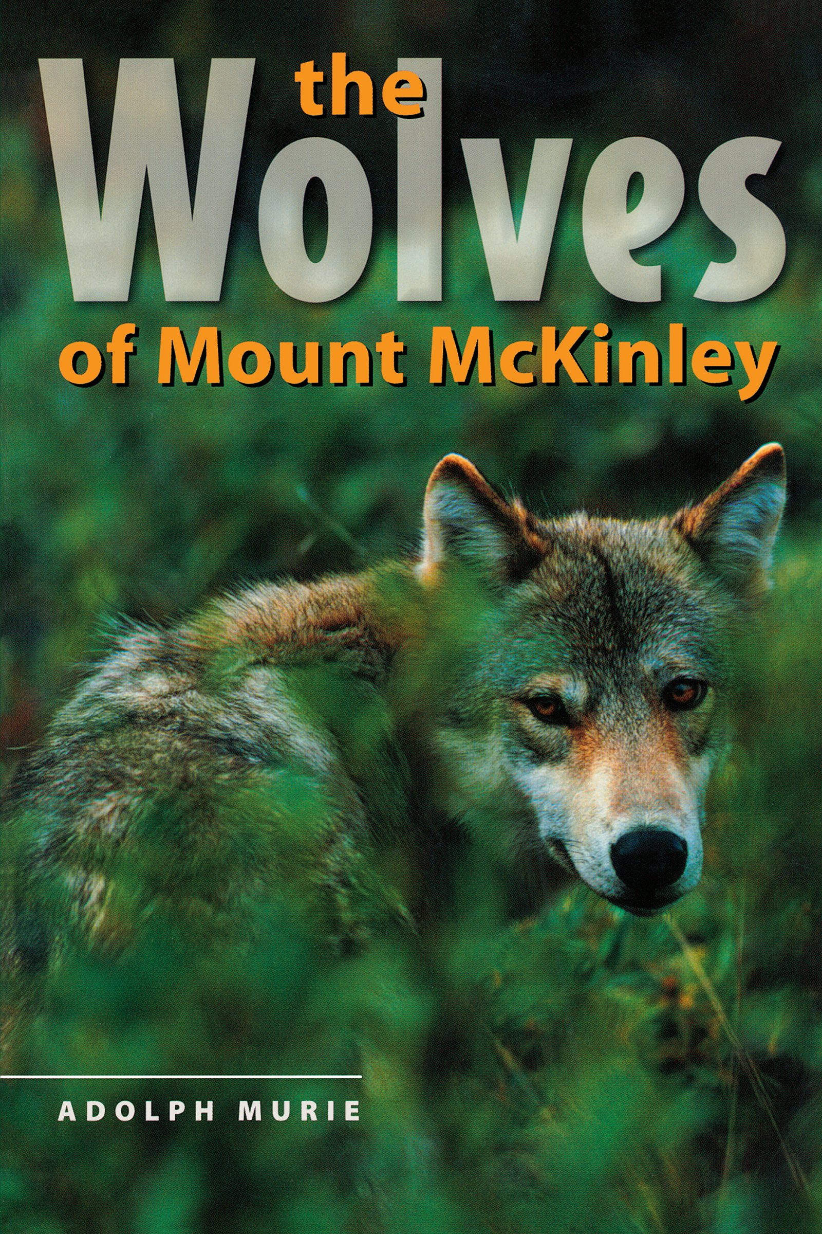 the-wolves-of-mount-mckinley