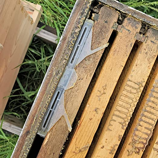 6 Pack Hive Beetle Trap Beekeeping Supply Tool Reusable Clear Plastic Pollen#09