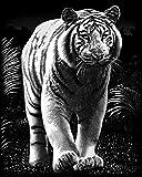 Reeves White Tiger Scraperfoil Artwork, Silver