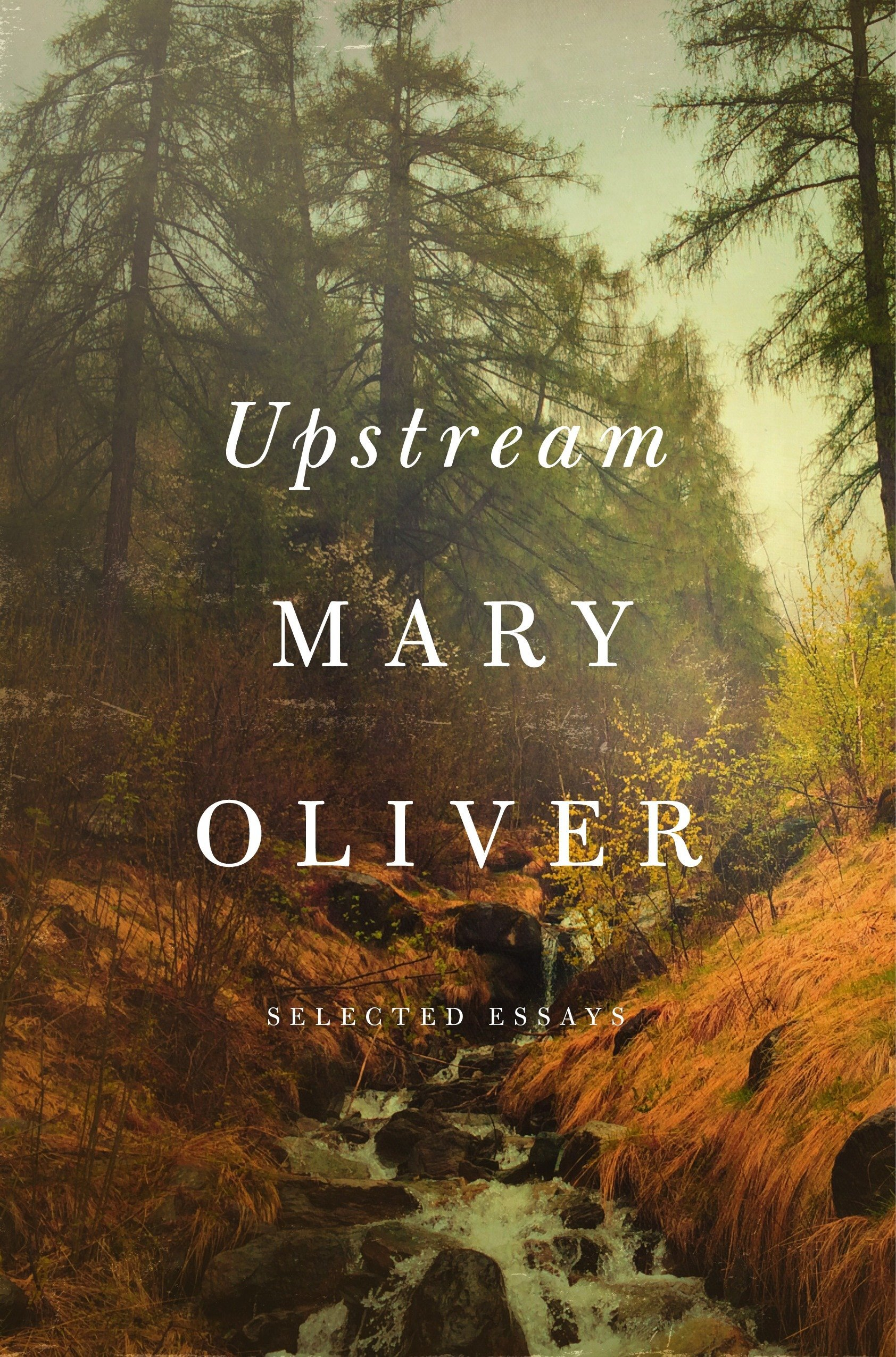 Upstream Selected Essays Mary Oliver 9781594206702 Amazon Books