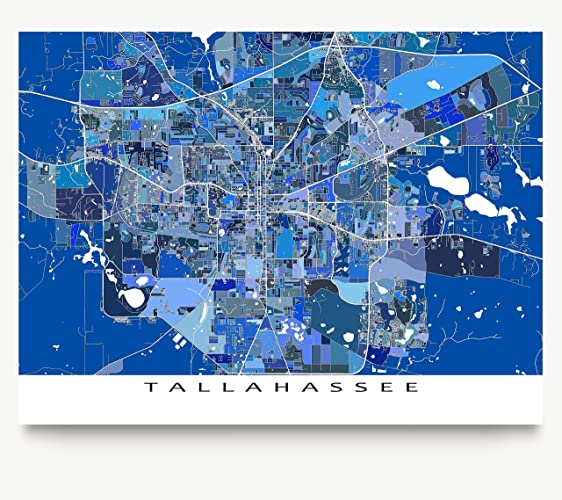 Amazoncom Tallahassee Map Print Florida USA City Street Poster
