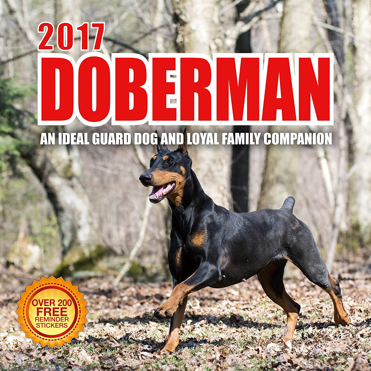 Amazon com 2017 doberman calendar 12 x 12 wall calendar 210 free reminder stickers office products