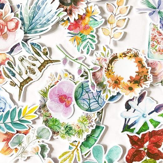 Pegatinas Decorativas | Pegatinas Florales Jardín Cazador de Sueños | Vinilos decorativos impermeables | 37 Stickers de Plantas | Pegatinas para Portátil Botella Álbum | Regalos para niños y adultos: Amazon.es: Hogar