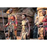 Black Panther: Okoye, Nakia and Ayo Poster (11x17)