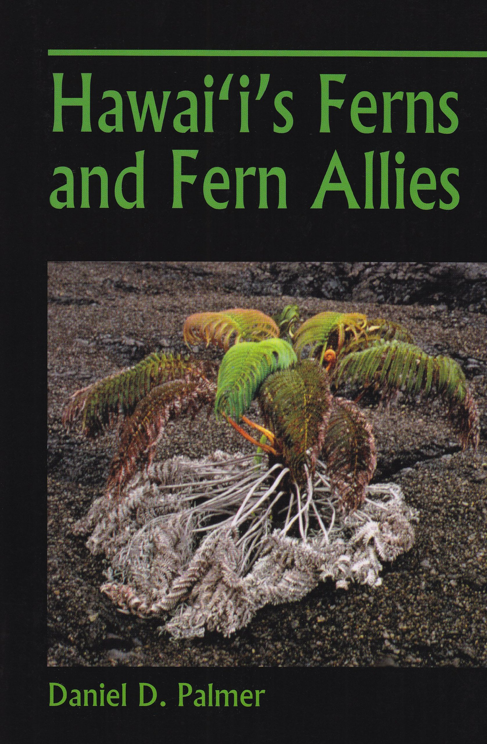 hawaii s ferns and fern allies daniel d palmer 9780824833473