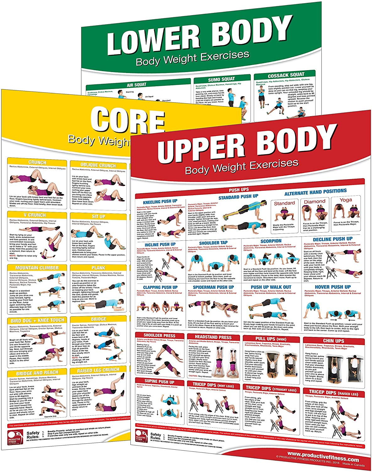 Laminated Bodyweight Workout Set of Posters/Charts - Bodyweight Training - Created by University Accredited Fitness Experts - Bodyweight Exercises - ... Chest Workout - Bodyweight Leg Work