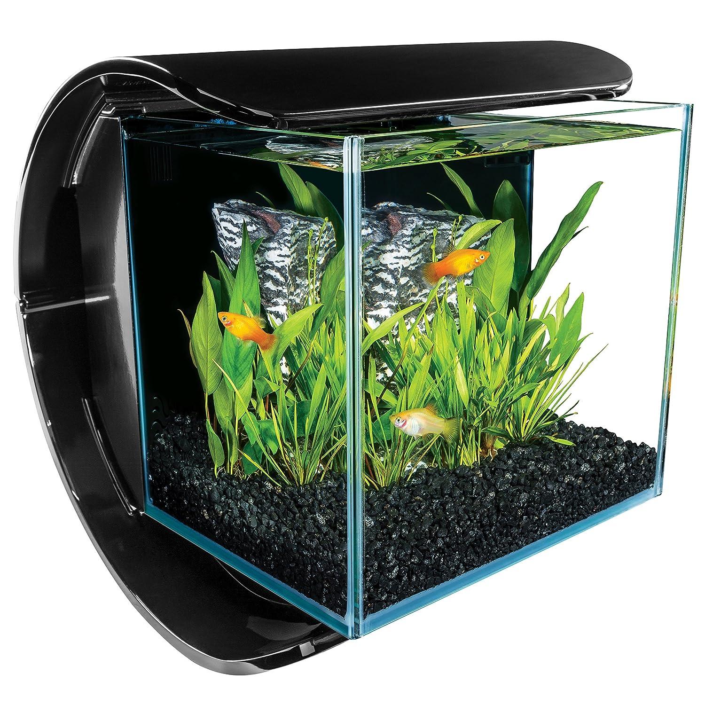 Fish aquarium price in india - Amazon Com Marineland Silhouette Square Glass Aquarium Kit 3 Gallon Pet Supplies