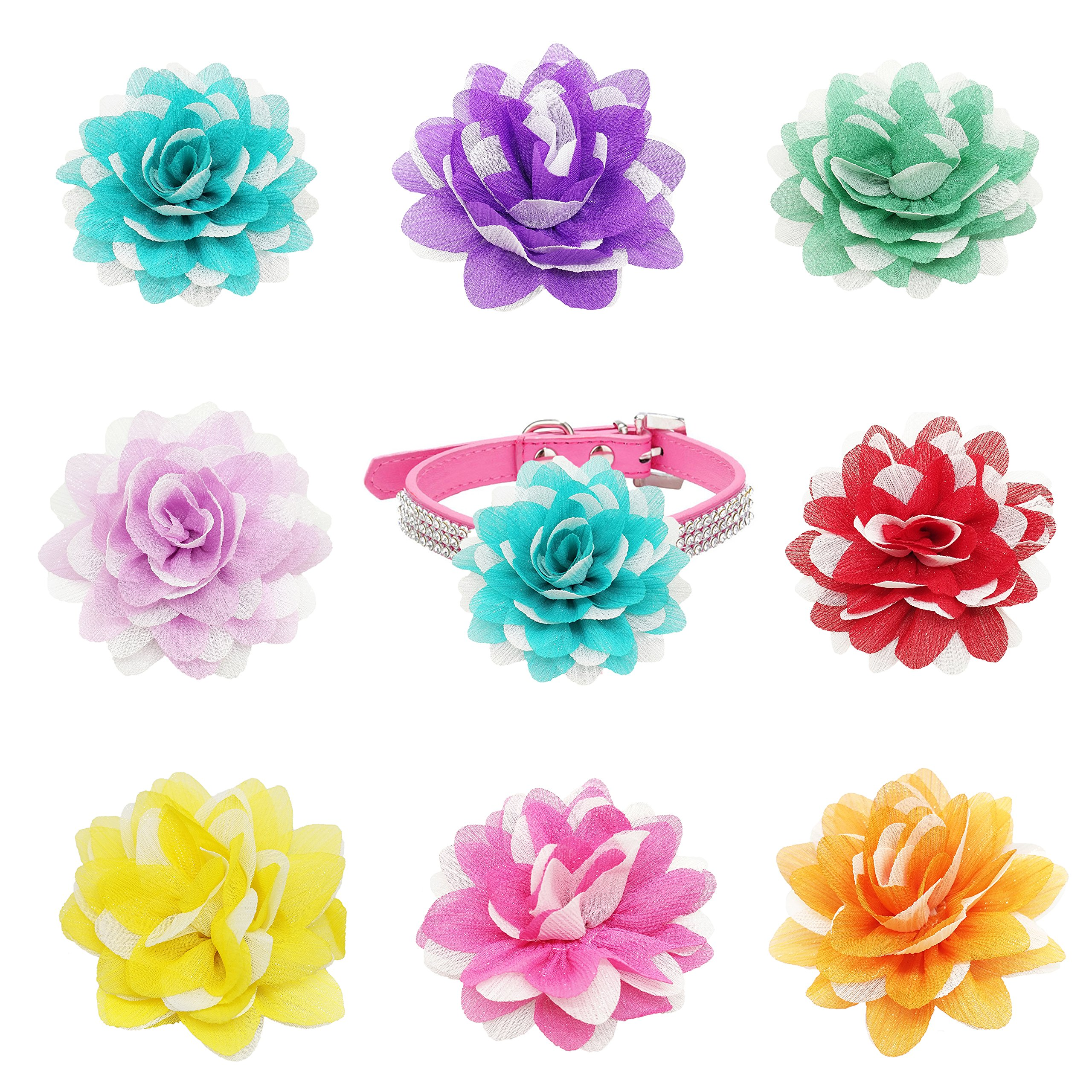 PET SHOW 3'' Dog Collar Charms Chiffon Flower Accessories for Cat Puppy Collars Dogs Bowtie Custome Pack of 8 by PET SHOW