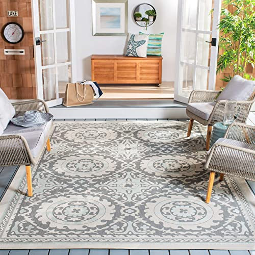 Safavieh Courtyard Collection CY7059-78A18 Light Grey and Anthracite Indoor Outdoor Area Rug 8 x 11