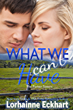 What We Can't Have (The Parker Sisters Book 4)