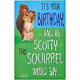 American Greetings Funny Birthday Card (Squirrel) (6091683)