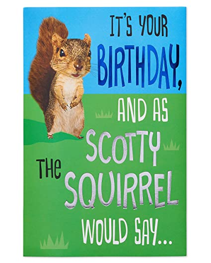 Amazon American Greetings Funny Squirrel Birthday Card With