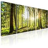 murando - Bilder Wald 200x80 cm - Leinwandbilder - Fertig Aufgespannt - 5 Teilig - Wandbilder XXL - Kunstdrucke - Wandbild - Waldlandschaft Natur Wald Panorama Baum c-C-0177-b-n