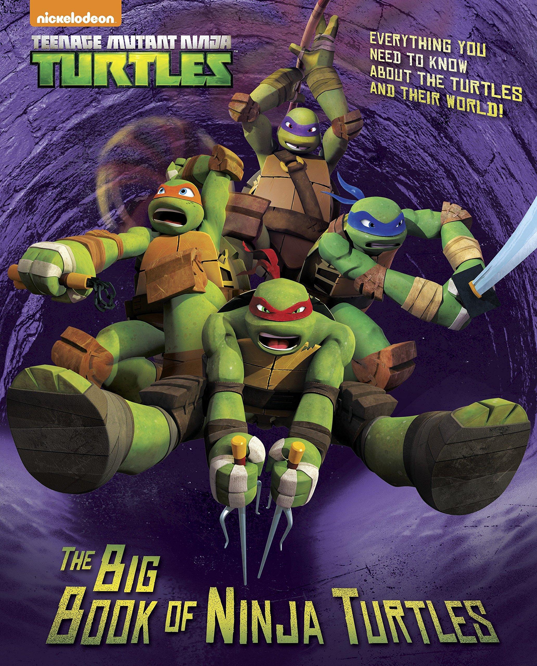 The Big Book of Ninja Turtles Big Golden Book: Teenage ...