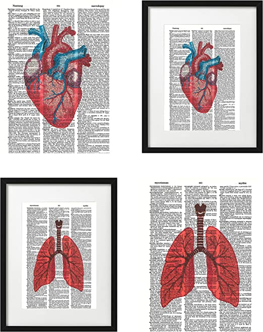 floral lungs drawing,anatomical prints art,Anatomy prints,Vintage Poster,flowers